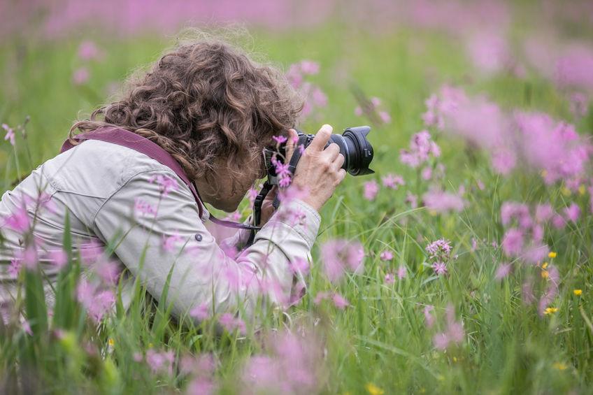Mujer haciendo fotos en el campo