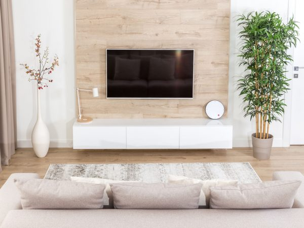 Living room with couch and led tv on wooden wall in modern interior