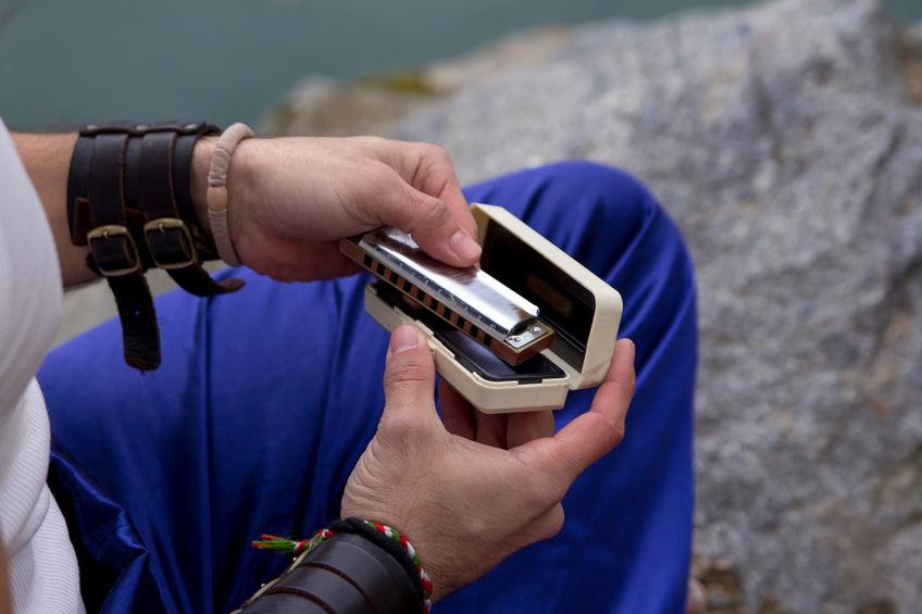 armonica en estuche